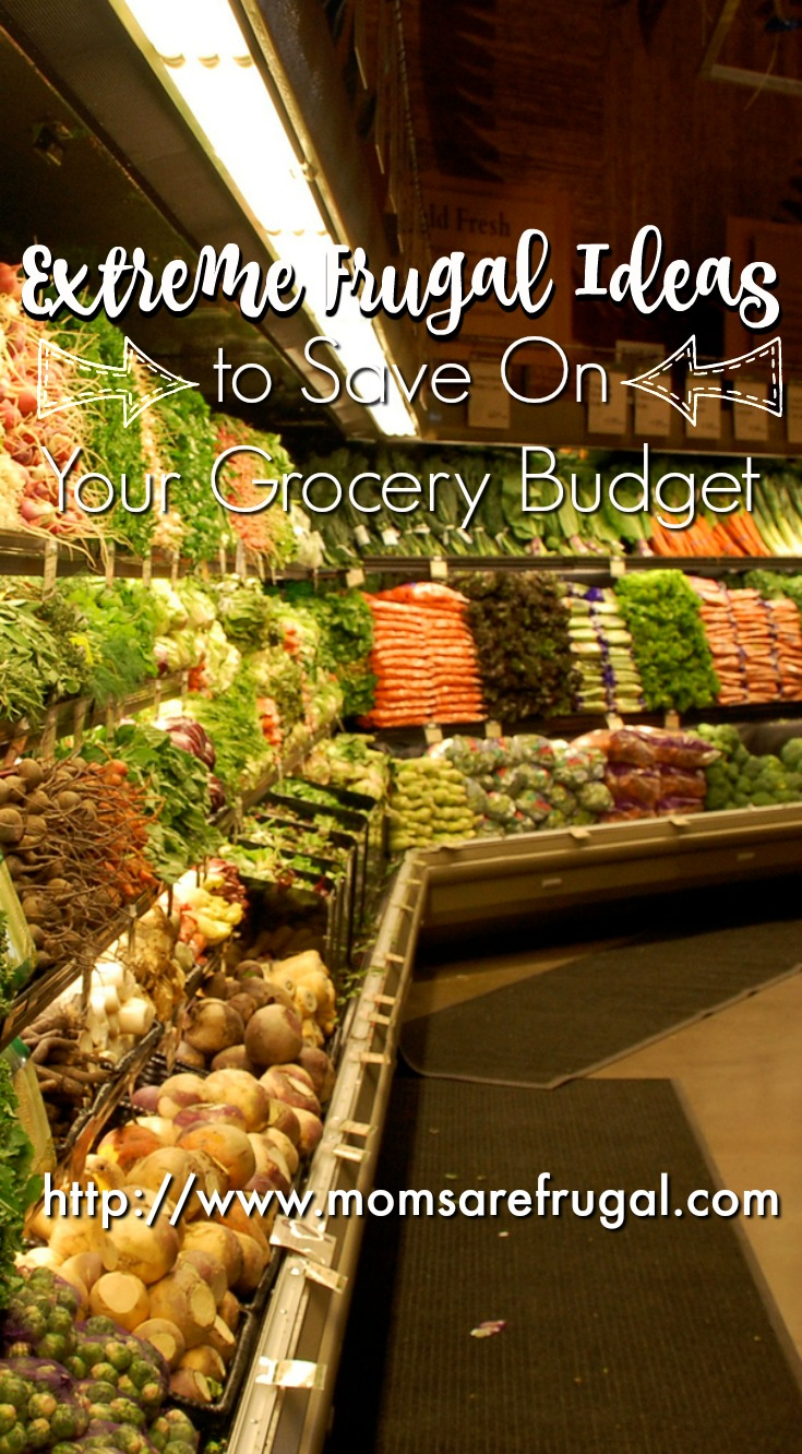 Extreme Frugal Ideas to Save On Your Grocery Budget