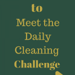 Best Ways to Meet the Daily Cleaning Challenge