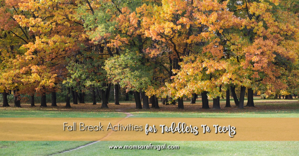 Fall Break Activities for Toddlers To Teens