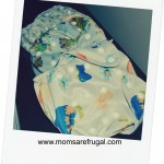 Cloth Diaper Decisions For Moms