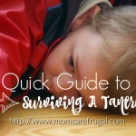 A Quick Guide To Surviving A Tantrum