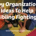 Toy Organization Ideas To Help Sibling Fighting