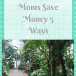 The Thrifty Moms Secret To Saving More