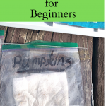Frugal Seed Starting Tips for Beginners