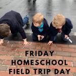 Friday Homeschool Field Trip Activities