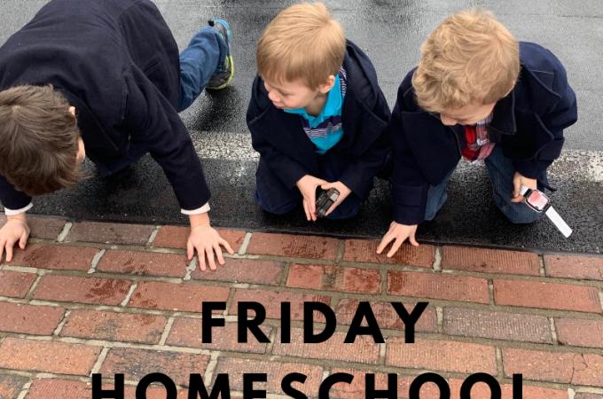 Friday Homeschool Field Trip Day