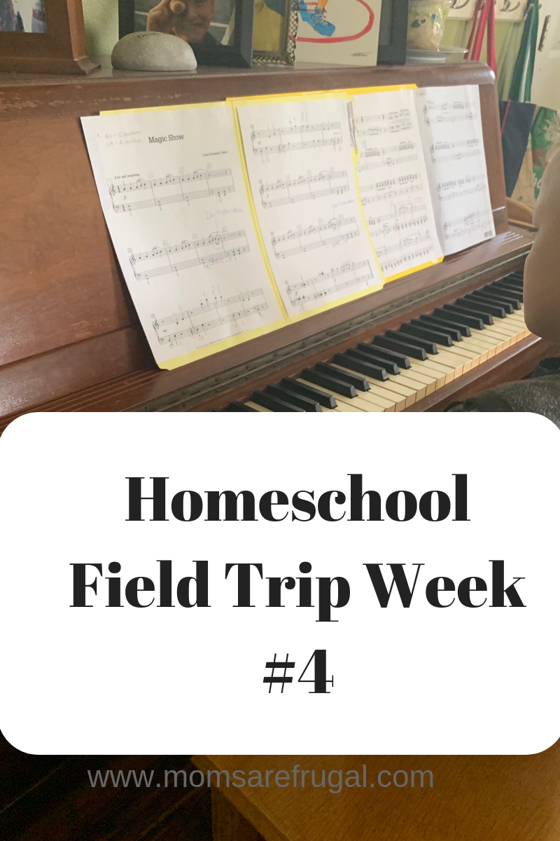 Mom of Boys Homeschool  Field Trip: Week 4