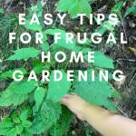 Easy Tips for Frugal Home  Gardening