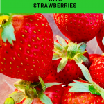 Frugal Gardening with Strawberries